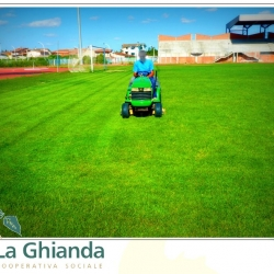 cura del manto erboso campo da calcio