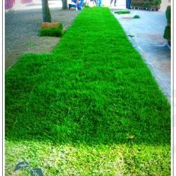 riqualificazione-verde